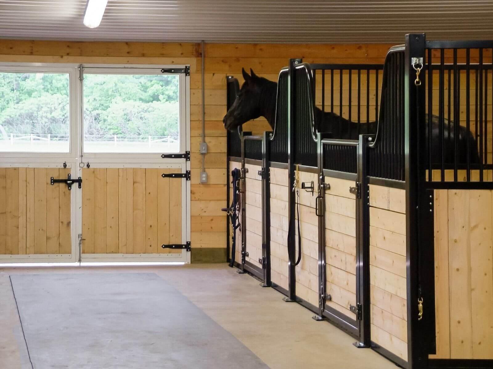 horse-barn-double-dutch-door-white-wood-iron-grip-latch-window
